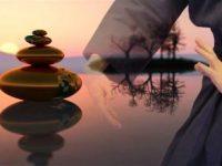 kiko-stage-qi-gong-méditation-été-respiration-pleine-nature-tai-chi-art-martial-énergétique-web.jpg